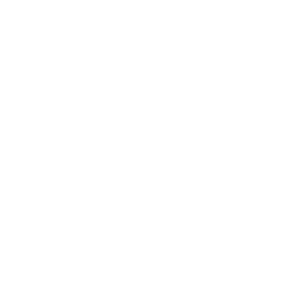 Exeter Academy of Martial Art logo