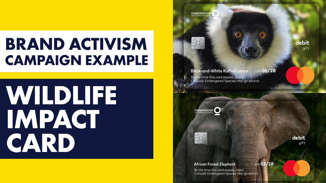 Mastercard Wildlife Impact Gift Card - Brand Activism Example